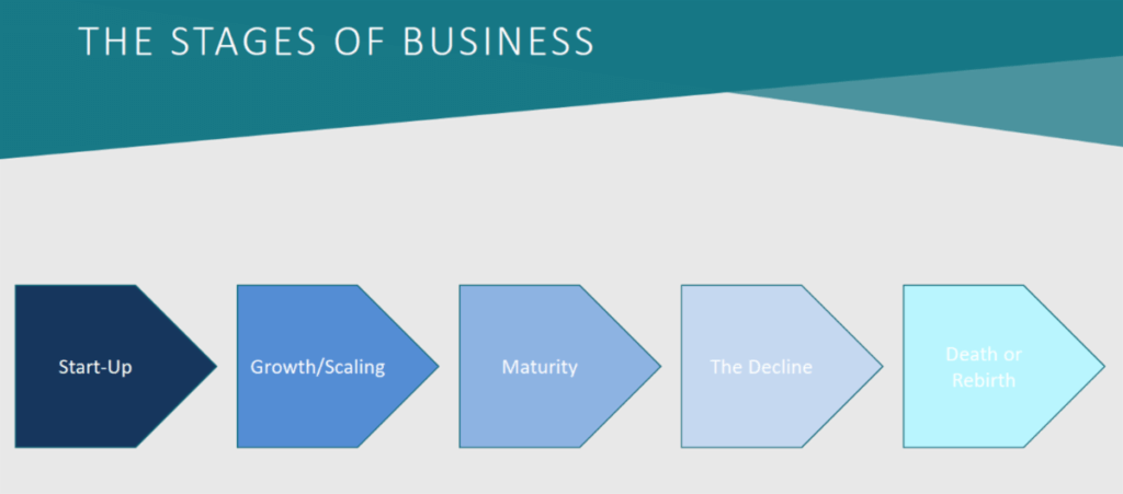 Business Lifecycles